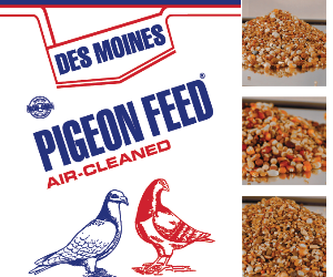 Des Moines Feed